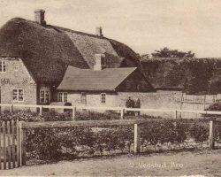 Vester Vedsted Sogns Slægts- og ejendomshistorie